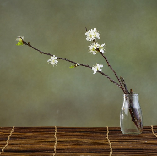 Embrace Wabi-Sabi at Home This Year | Graham and Kelly Levine